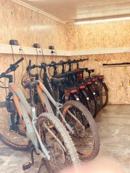 E Bike Verleih Vermietung Mountainbikes Treckingraeder