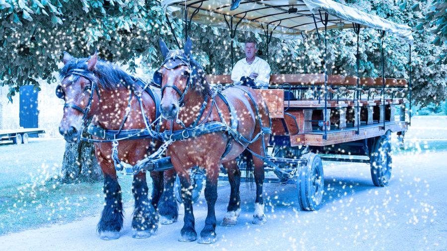 Jetzt anmelden: Planwagenfahrt durchs Lehmbachtal, Weihnachtsmarktbesuche & 3 Gang-Abendmenü